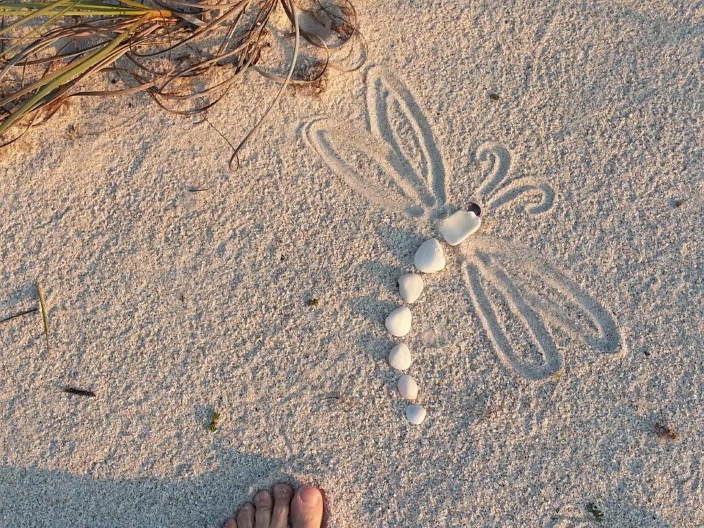 nokomis_beach_hotels_escape.jpg