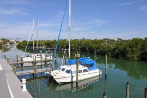 Sarasota Marina Dock Slips