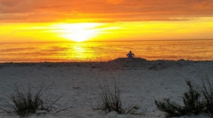 escape hotel beach sunset